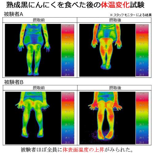 黒にんにく摂取による体温変化