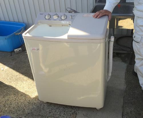 エゴマの実を脱水、2層式洗濯機