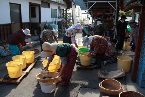 えごまの水洗い作業