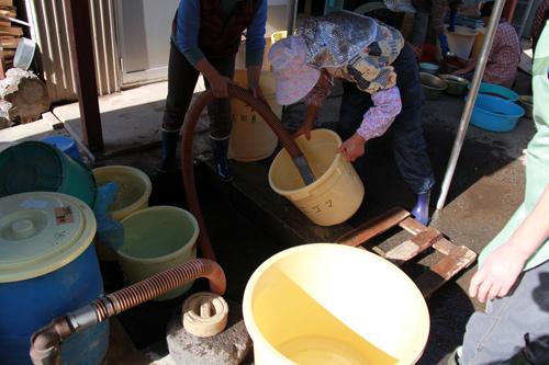 井戸水で水洗い