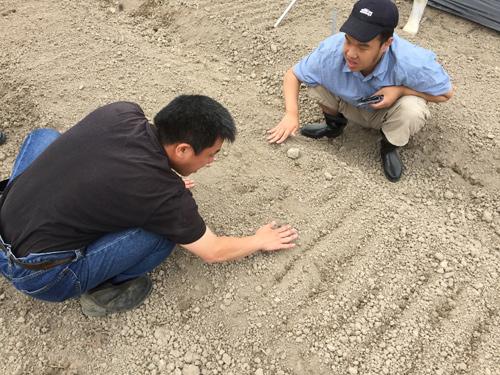 種に土をかける